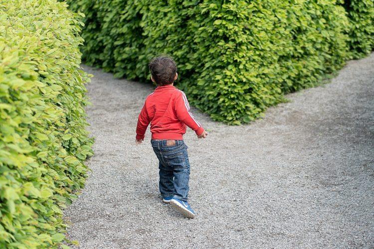 Das verrückte Labyrinth Junior - schnelle Infos zum Spieleklassiker